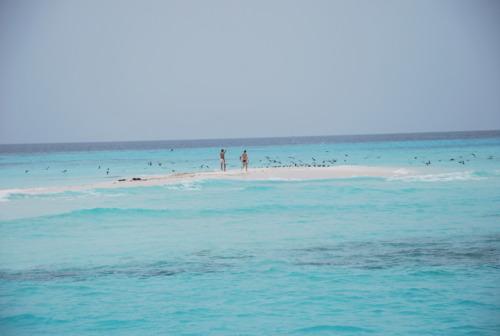 Un îlot désert prénommé «Nathalie».