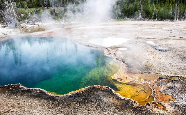 parc national USA yellowstone