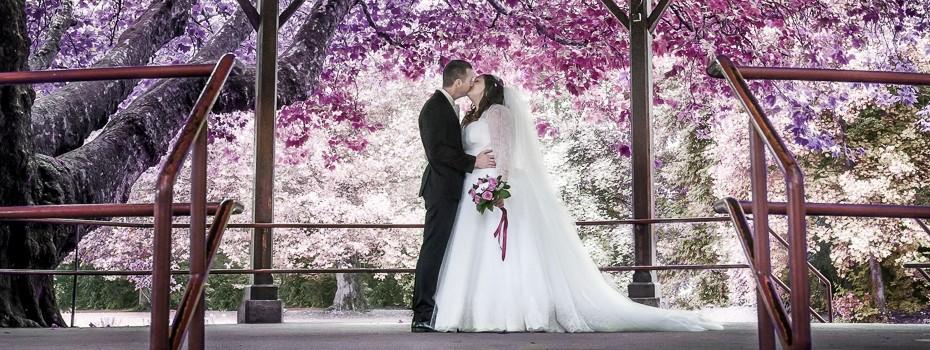 Mariage-vin-vendanges