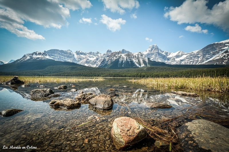 Jasper National Park icefields parkway