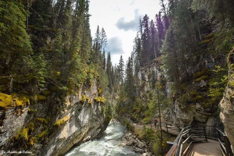 Johnston canyon Banff NP