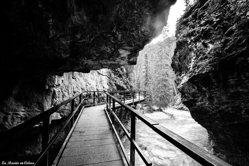 Johnston canyon banff National Park