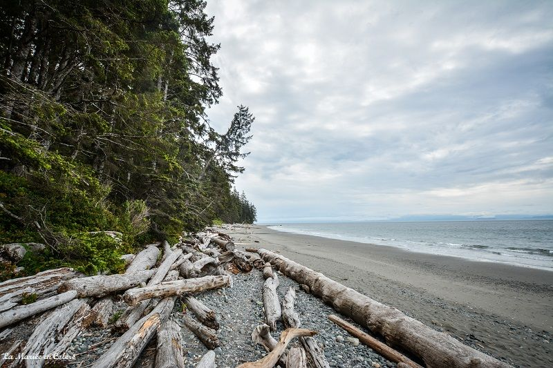 China-beach-vancouver-island