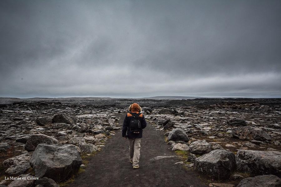 Myvatn Islande detifoss
