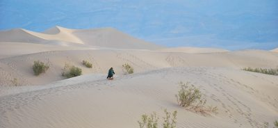 mesquite sand flat dunes la vallée de la mort