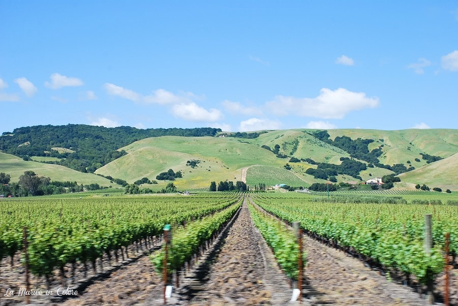 wine country californie