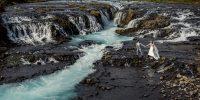 {Elopement} Mariage simple et nature en Islande