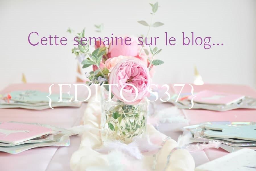 edito blog