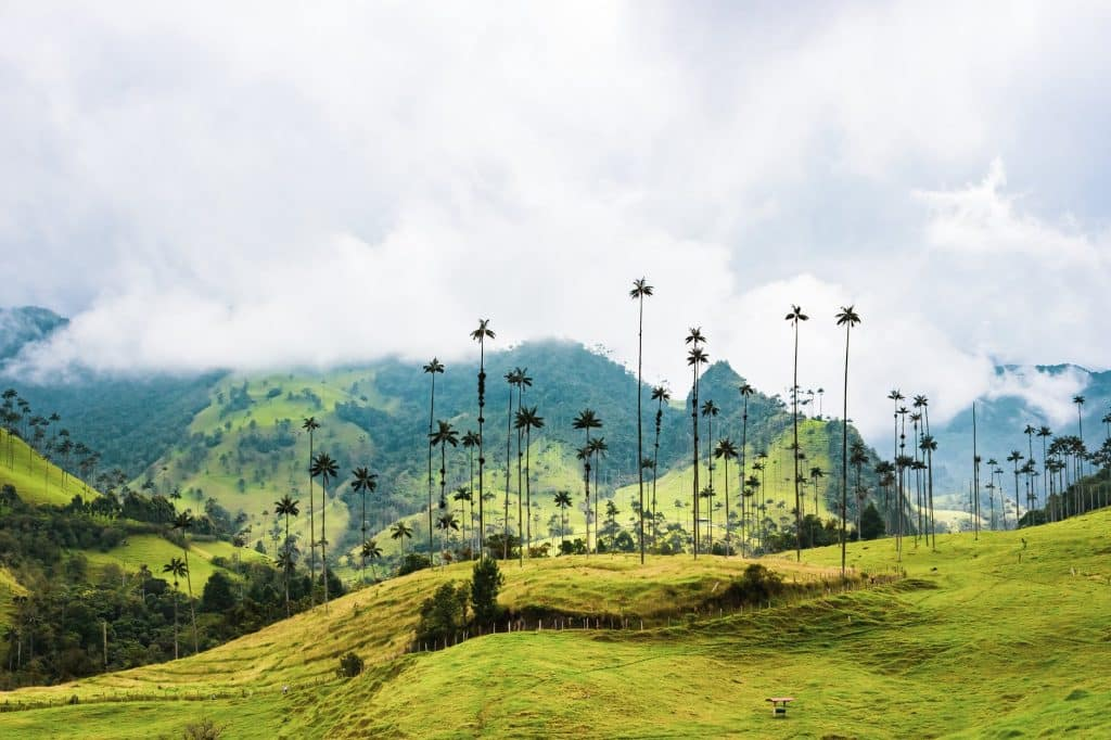Un voyage de noces en Colombie