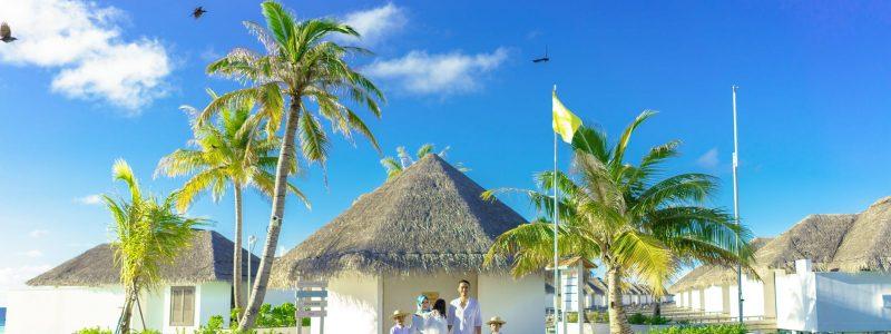 green palm trees and white gazebo