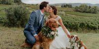 Mariages 2020 : elles ont dit Oui cette année !