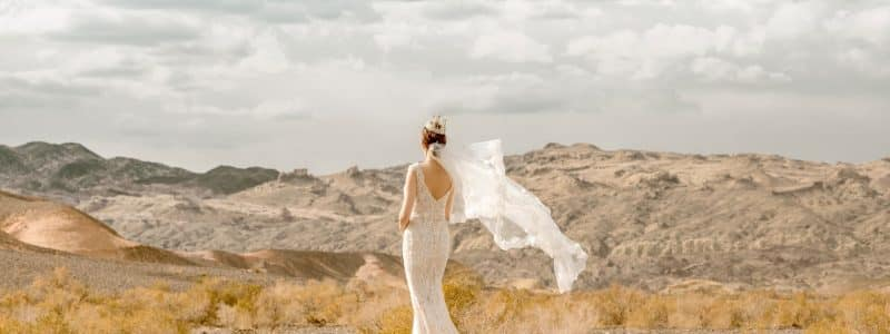 blog bride in wedding dress standing in wilderness