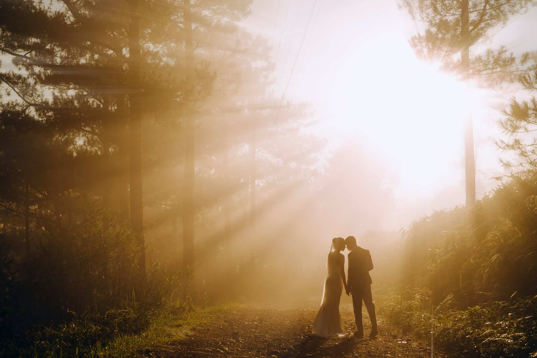 unrecognizable newlywed couple in forest