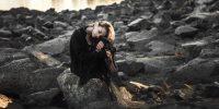 Comment gérer le stress du mariage quand on a des troubles anxieux ?